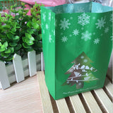 Frosted Christmas Goodies Bag - SHOPPLEHUB