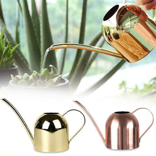 500/1000ML Watering Pot (Stainless Steel)