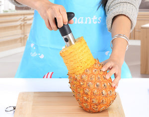 Hot Selling Creative Stainless Steel Fruit Pineapple Corer Slicers Peeler - SHOPPLEHUB