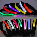 LED Dogs Collar - Assorted Colors and Sizes - SHOPPLEHUB