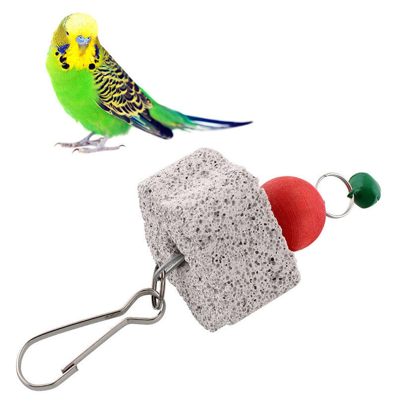 Bird Squirel Chew Bite Scratcher Bell Toy Teeth Grinding Parakeet Budgie - SHOPPLEHUB