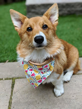 Load image into Gallery viewer, Somethin' Fruity - Bandana Half (Must Purchase Any Two Patterns)