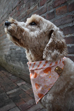 *PRE-ORDER* Pumpkin Patched - Pre-Designed Full Reversible Bandana