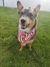 Load image into Gallery viewer, Cherry Cola - Pre-Designed Full Reversible Bandana