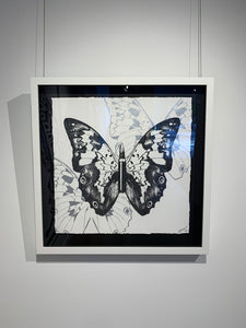 """Metamorphosis, Black Butterfly on White"" by Rubem Robierb"