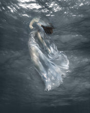 "Load image into Gallery viewer, ""Refuge"" by Barbara Cole"