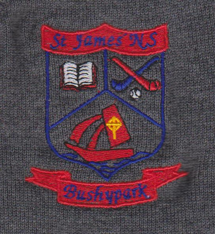 ST JAMES BUSHY PARK NATIONAL SCHOOL GALWAY