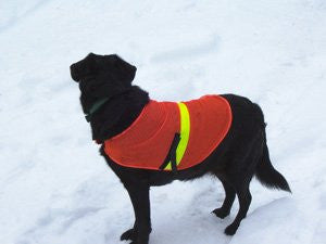 Petsavers Reflective Dog vest Medium