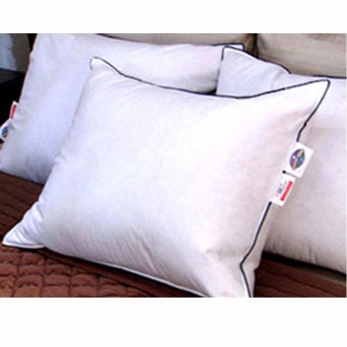 Double DownAround Down Pillow (Size: Standard)