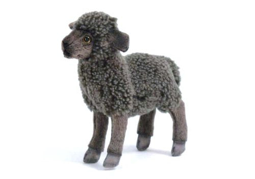 "Kid Black Sheep 11.02"" by Hansa"