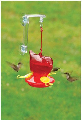 Songbird Essentials SEBCO312W Window Hummingbird Bird Feeder