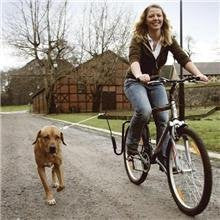 Springer Bike Lead for Dogs