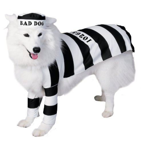 Prisoner Pet Costume - Medium