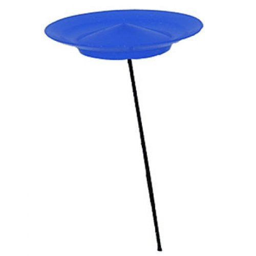 Spinning Plate- Blue