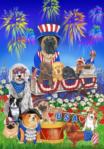 Patriotic USA Firework Star Stripes Dog House Flag