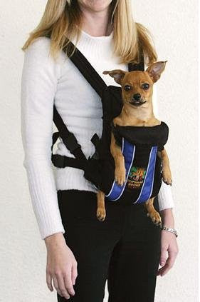 Legs Out Front Carrier - Blue, Small