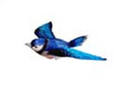 New Clark Collection Blue Jay Window Magnet Made From A Polyresin And Hand Painted 3 Dimensional