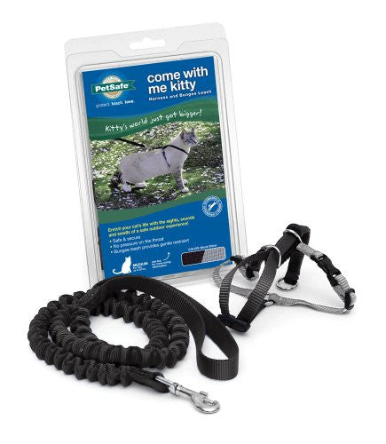 Come with Me Kitty Harness & Bungee Leash - Black, Small