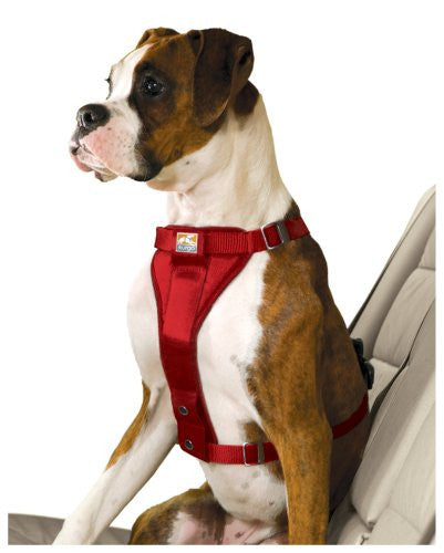 Enhanced Strength Tru-Fit Smart Harness with Seatbelt Tether - Red, Large