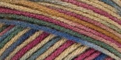 Super Saver Yarn - Painted Desert