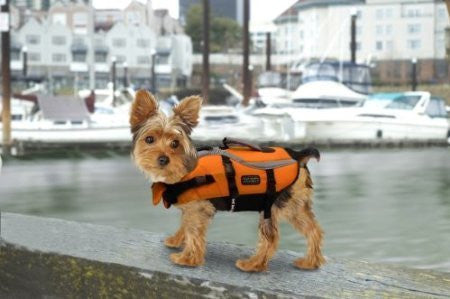 Kyjen Outward Hound Designer Pet Saver Life Jacket, X Small, Orange