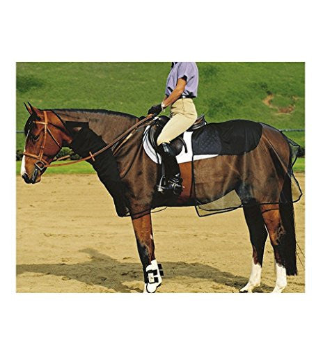 Cashel Quiet Ride Bug Armor - 2 Piece Set