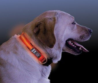 Nite Dawg LED Dog Collar - Red, Large