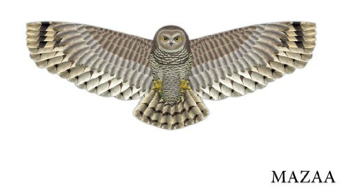 Birds of Prey, Owl