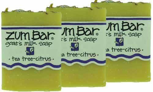 ALL-NATURAL GOAT'S MILK SOAP TEA TREE-CITRUS ZUM BAR 3oz
