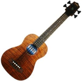 U-Bass-Acoustic-Electric with Bag -Satin/Exotic Mahogany
