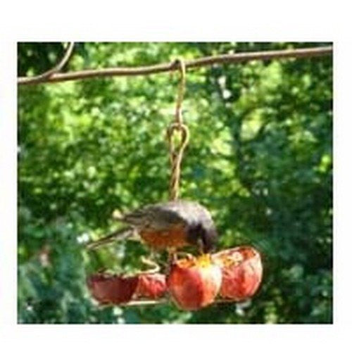 Four Fruit Feeder