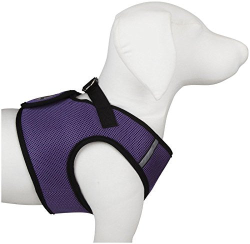 WD Sidekick Harness - Purple, X-Small