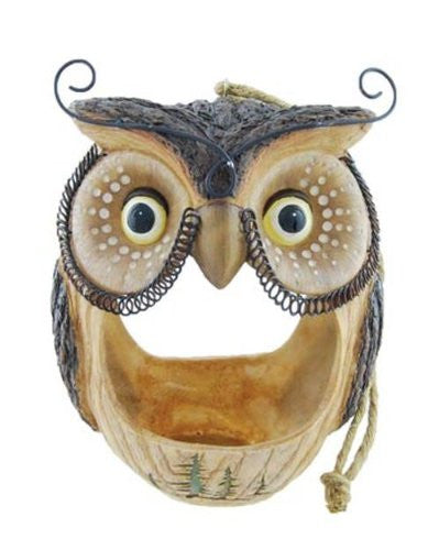 Woodsy Owl Bird Feeder