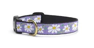 Up Country Collar - Daisy, X-Large