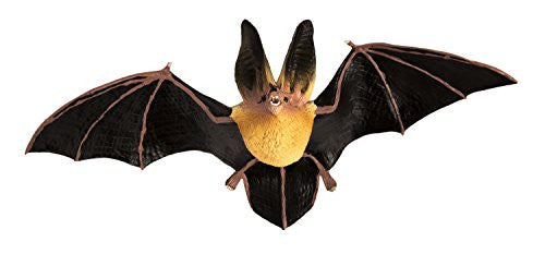 Townsend's Big-eared Bat Incredible Creatures