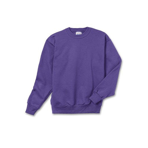 Hanes Youth ComfortBlend Long Sleeve Fleece Crew - p360 (Purple / X-Small)