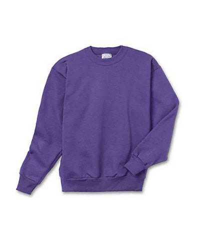 Hanes Youth ComfortBlend Long Sleeve Fleece Crew - p360 (Purple / Small)