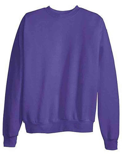 Hanes ComfortBlend Long Sleeve Fleece Crew - p160 (Purple / Small)