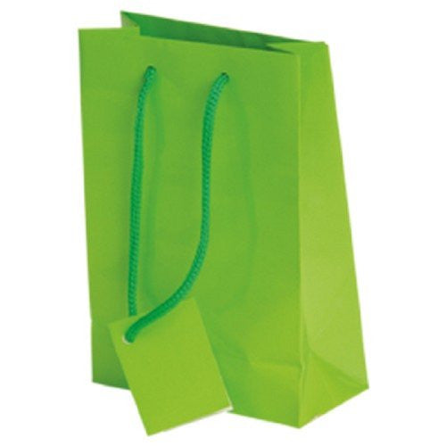 SMALL GIFT BAGS/LIGHT GREEN - 12pcs
