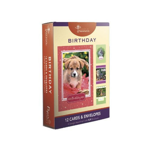 12PK BOXED BIRTHDAY CARDS WITH SCRIPTURE - Animals - 1 box. 4 designs in box. Bulk packed.