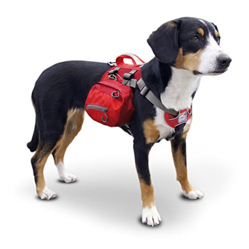 Baxter Pack - Regular, Barn Red