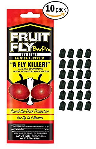 Fruit Fly Bar Pro Not In Pricelist Capital Books And Wellness