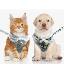 Load image into Gallery viewer, Harness Leash Set for Small Dogs