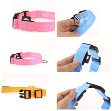 Load image into Gallery viewer, Night Safety LED Pet Dog Collar
