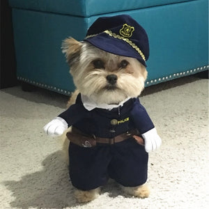 Best Halloween Dog Costumes in 2019