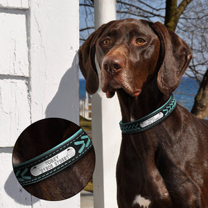 Adjustable Padded Leather Personalized Pet Name & ID Collar