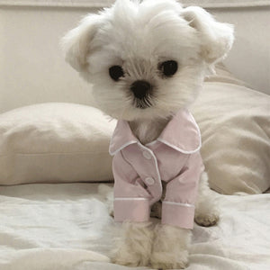 Cute Dog Sleep Dress