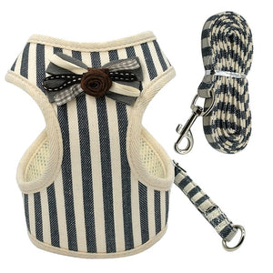 Harness Leash Set for Small Dogs