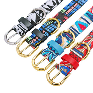 Leather Padded Pet Collars for Chihuahua