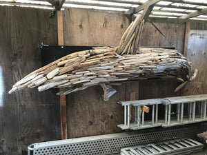 The driftwood shark